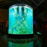china custom cheap super big round pmma glass aquariums clear cylinder acrylic fish tanks