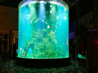 china custom cheap super big round pmma glass aquariums clear cylinder acrylic fish tanks