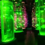 2018 acrylic jellyfish tank supplier