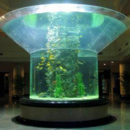 pmma glass aquarium half cylinder perspex clear fish tank