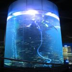 clear acrylic cylinder big fish tank for aquariums or ocean park