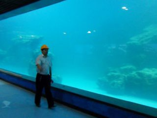 Cast wall UV acrylic panel for aquarium,oceanarium