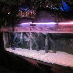 Acrylic pool panel / window for Underwater Sea World