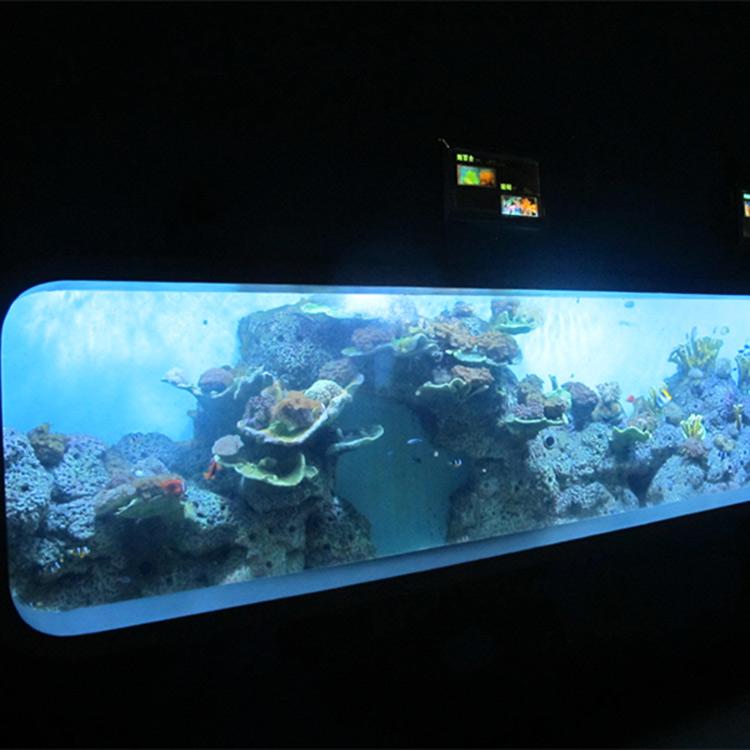 Artificial Cast Acrylic Cylindrical Transparent fish aquarium / view window
