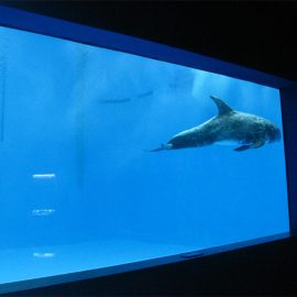 high quality Large acrylic aquarium / pool window underwater thick windows sheet