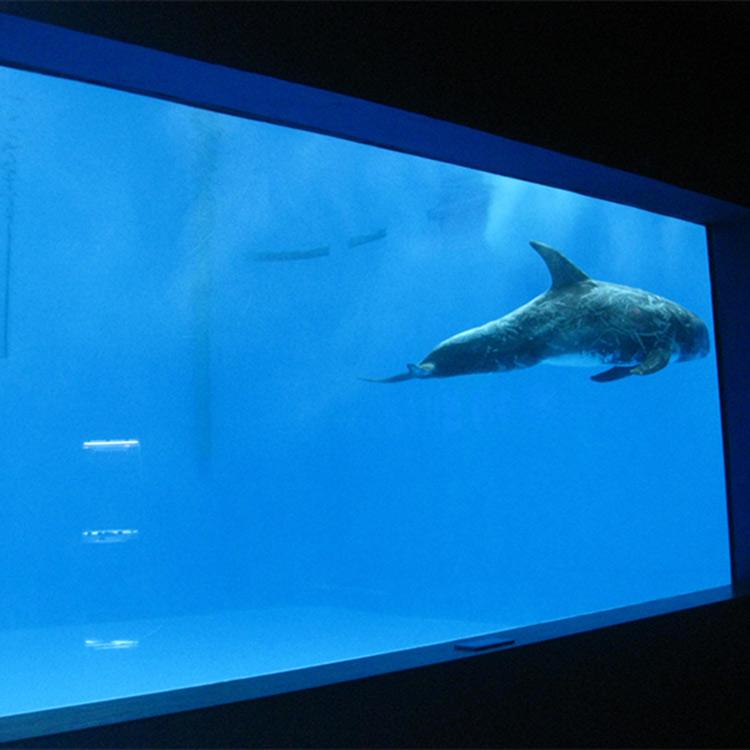 high quality Large acrylic aquarium / pool window underwater thick windows sheet