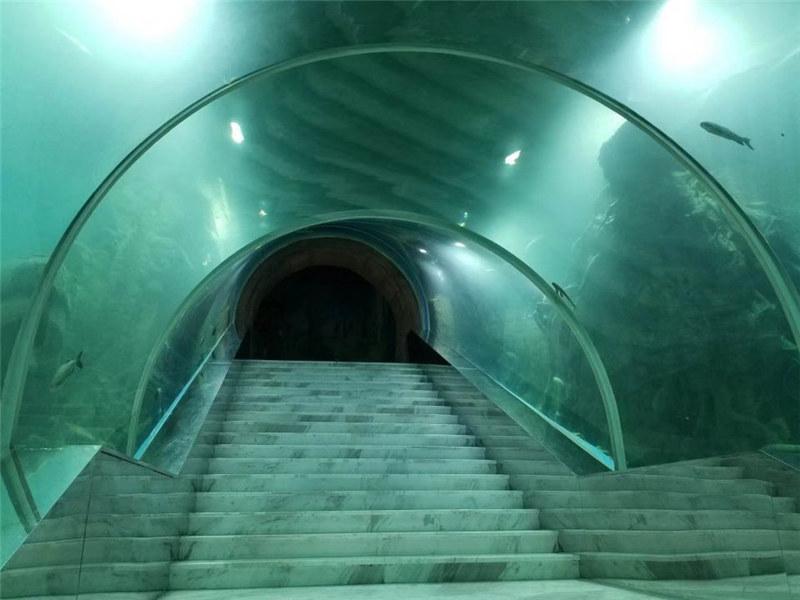 Acrylic tunnel aquarium project price