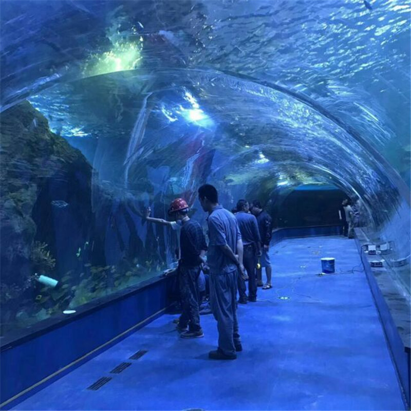 Acrylic tunnel oceanarium project in public aquariums
