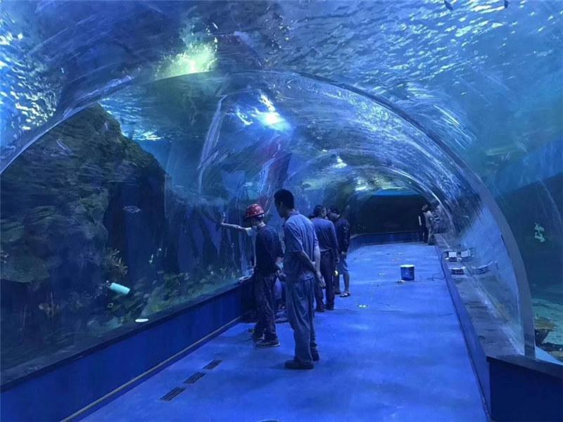 Custom plexiglass acrylic tunnel aquarium