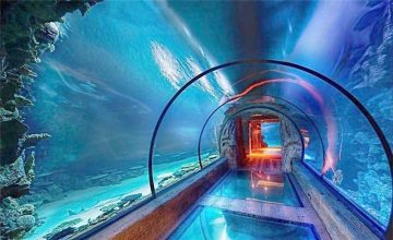 Modern design acrylic aquarium long tunnel